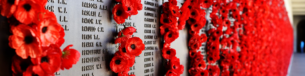 Festividades en Reino Unido: Poppy Day